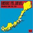 Diverse artister: Bærre På Jævel Vol. 2